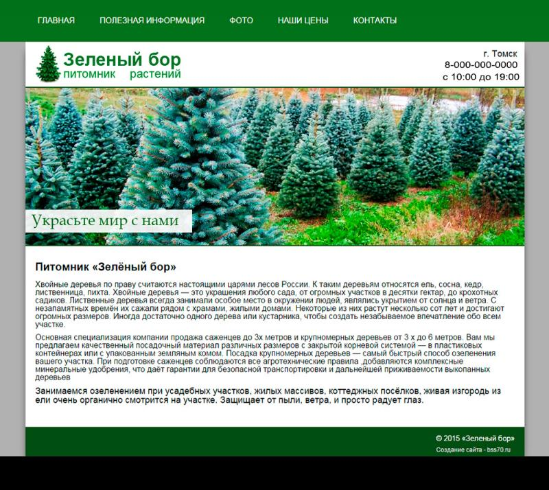 Зеленый бор (сайт)